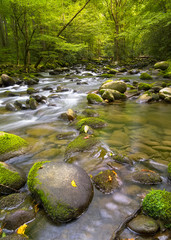 Silky stream near Greenbrier Road in the Smoky Mountains