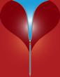Herz Corsage
