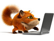 Fox using a laptop