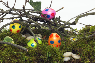 Hidden decorated Easter Eggs for the hunt