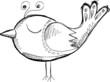 Sketch Doodle Bird Vector
