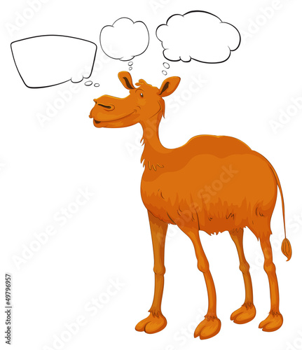 A camel with empty callouts