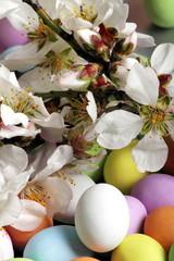 Pasqua e mandorlo in fiore