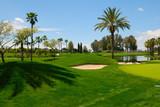 Fototapety Landscape golf