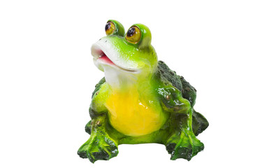 frog on the white background