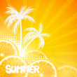 Vector Illustration of a Summer Background with Orange Fruits