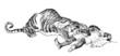 Tiger : Man-Eater - Mangeur d'Hommes - Menschenfresser