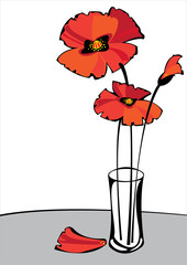 red vector poppies in vase isolated on white background
