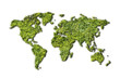 ecology world map from grass on white background