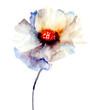 Quadro The Bud of white flower