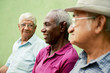 Group of old black and caucasian men talking in park - 49815722