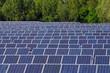 Solarfeld im Allgäu