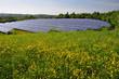 Solarfeld im Frühling