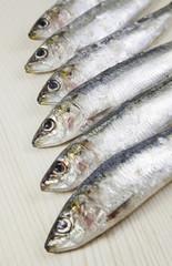 Heads raw sardines