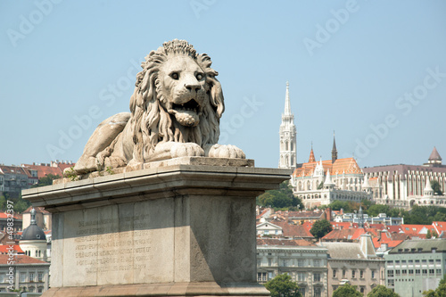 Guardian lion statue with Buda view in Budapest