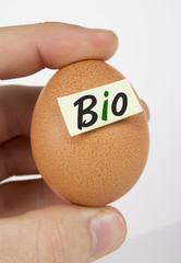Bio Eier