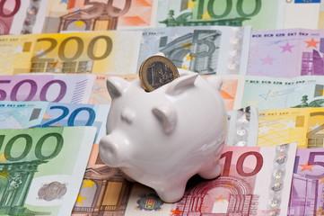 Sparschwein auf Geldscheinen