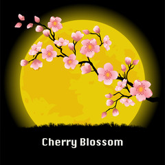 Cherry Blossom branch in front of the yellow Moon