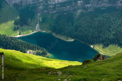 Blick auf den Seealpsee - Alpstein - Alpen - Schweiz