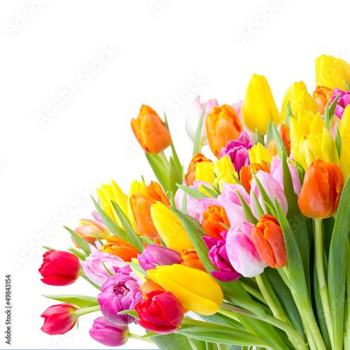 Foto op Aluminium Narcis bunter Blumenstrauß