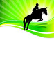 Pferdesport - 18