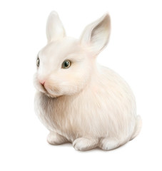 white easter rabbit isolated on white background