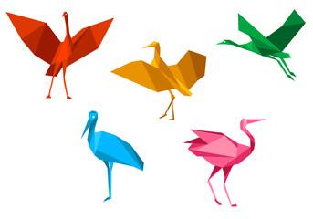 Cranes, storks and herons birds