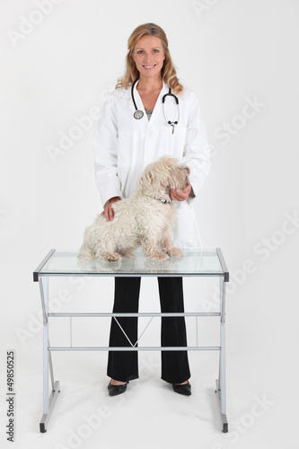 Female vet treating dog