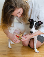 Woman cutting her small dog claws