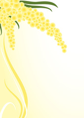 sfondo rametti di mimosa