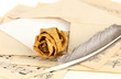 Old envelope with blank paper with dried rose