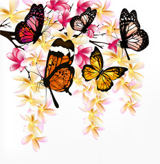 Colorful vector background with realistic tropical butterflies a