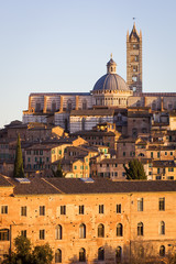 Cathedral in the old town of medieval Siena at sunset.
