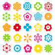 set of bright flower stickers