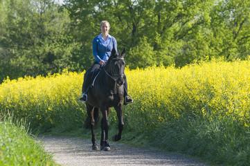Ross und Reiterin ganz entspannt