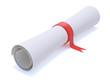 University diploma scroll