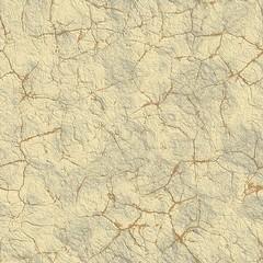 Dry mud. Seamless texture.