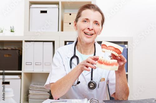 Zahnarzt mit Gebissmodell in der Hand