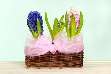 spring flowers in the basket
