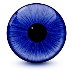 Blaues Auge, Pupille