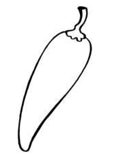 hand drawn, vector illustration of red pepper