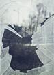 canvas print picture - glas, bruch, scherbe, eingeschlagen, fenster