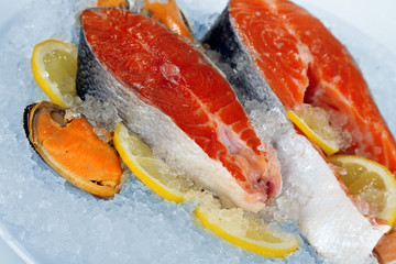 Pieces of red fish on ice in plate isolated on white