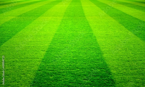 canvas print picture soccer field