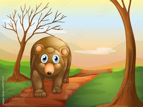 Deurstickers Beren The lonely bear walking