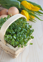 Easter spring table, watercress salad, tulip flowers, eggs