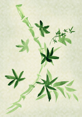 Green Bamboo, painted in watercolo