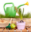 watering can, tools and flowers