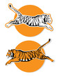 Tiger signs