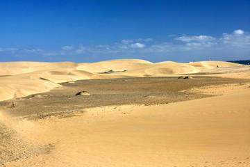 "Desert ""Dunas de Maspalomas"" in Gran Canaria island,Spain"